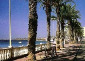 SP-Torrevieja(seafront)175